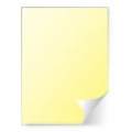Yellow Paper Permanent